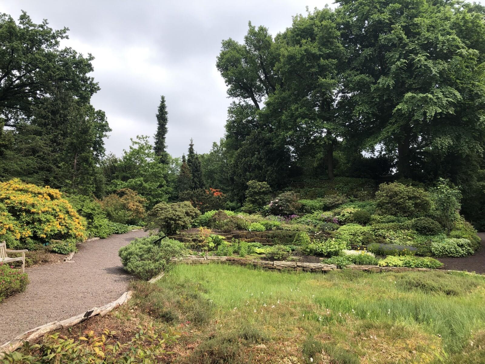 Rondleiding Botanische Tuinen Utrecht