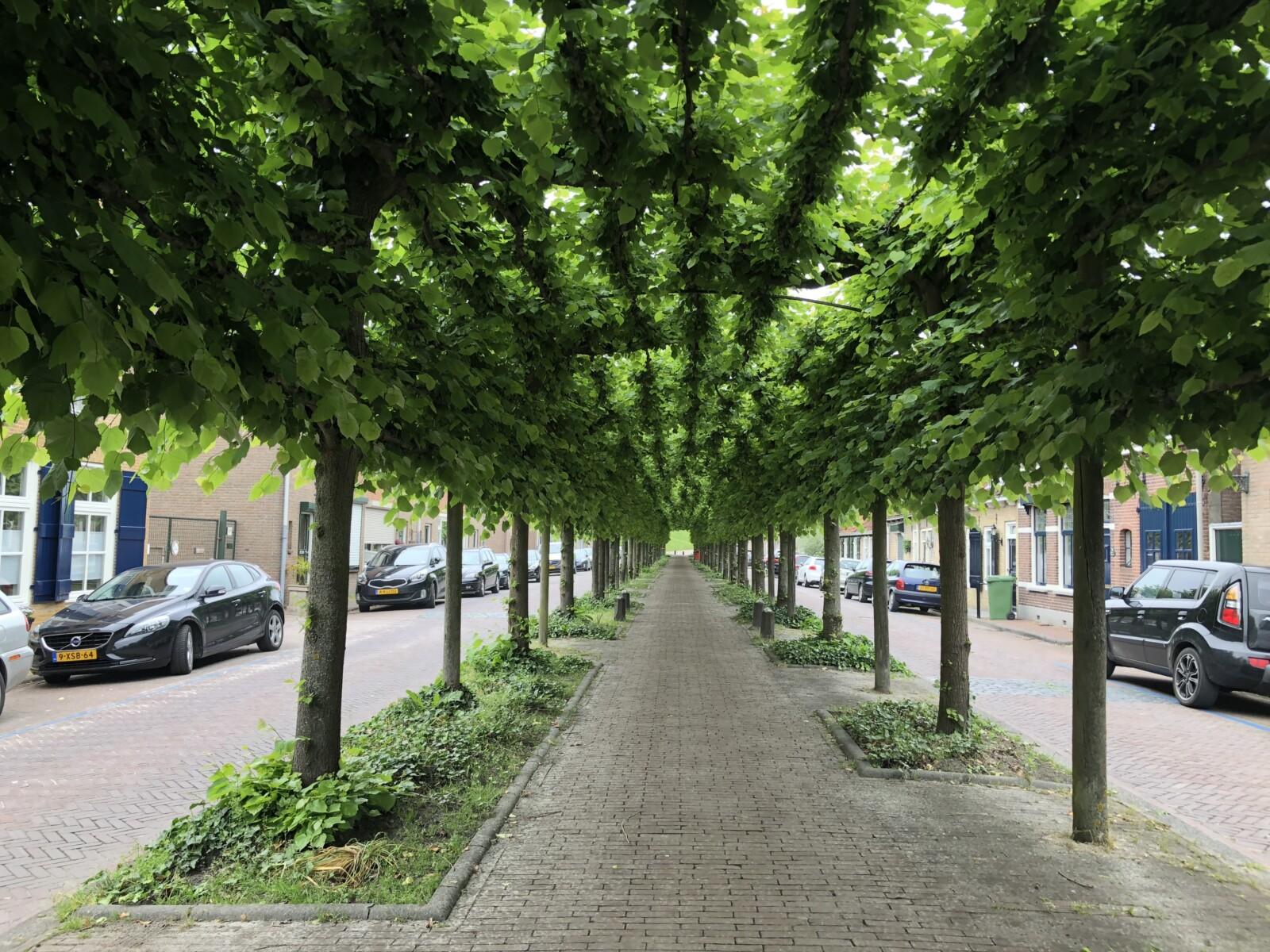 Op hotel in Dordrecht