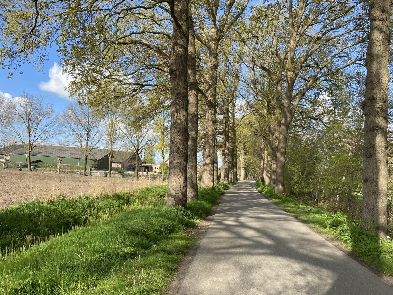 Rondje Overberg - Renswoude
